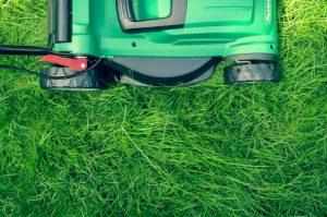 Lawn mower we use at DC Lawn & Landscape in Fairhope, AL