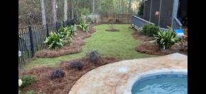 Gorgeous landscape around a backyard pool by DC Lawn & Landscape in Fairhope, AL