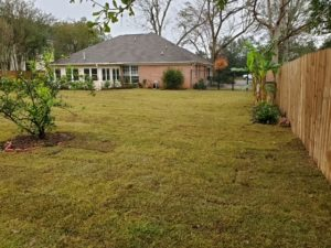Sod installation to finish a backyard by DC Lawn & Landscape in Fairhope, AL