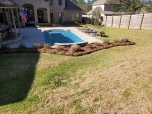 Perfect backyard with straw and plants by DC Lawn & Landscape in Fairhope, AL