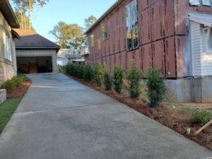 Green shrubbery establishing a beautiful property line by DC Lawn & Landscape in Fairhope, AL