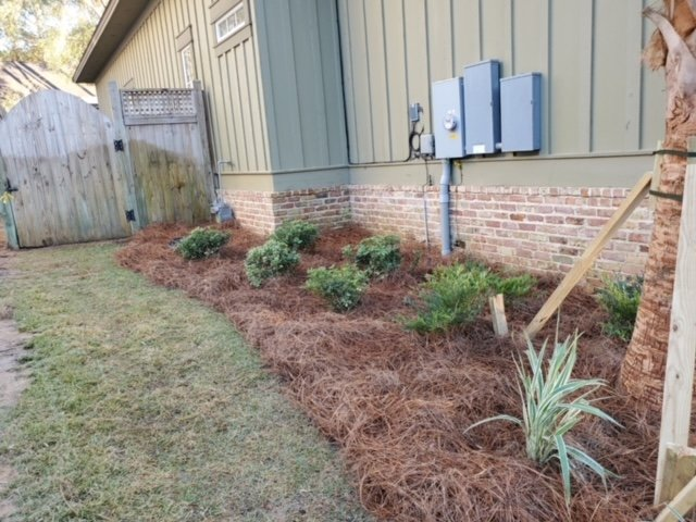 Pine straw lining a house with small green shrubs by DC Lawn & Landscape in Fairhope, AL