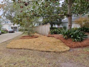 Sod installed to finish a yard by DC Lawn & Landscape in Fairhope, AL