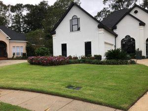 Beautiful flower bed and monkey grass by DC Lawn & Landscape in Fairhope, AL