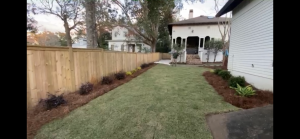 Sod installed with pine straw bed lining a fence by DC Lawn & Landscape in Fairhope, AL