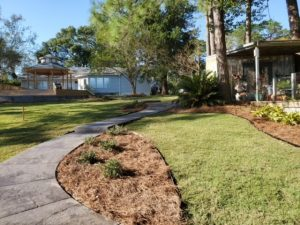 Landscape with pine straw installation by DC Lawn & Landscape in Fairhope, AL