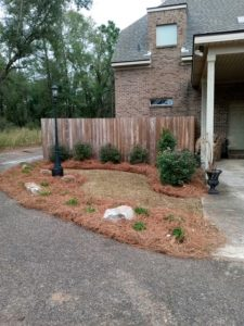 Unique straw bed with greenery done by DC Lawn & Landscape in Fairhope, AL