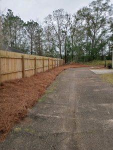 pine straw lining a driveway done by DC lawn & Landscape in Fairhope, AL