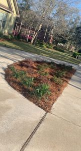 flower bed by DC Lawn and Landscape in Fairhope, Alabama