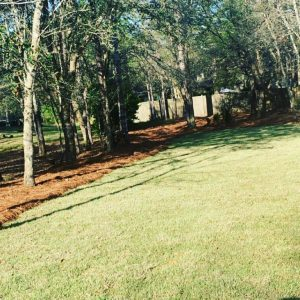 fresh sodded yard by DC Lawn and Landscape in Fairhope, Alabama