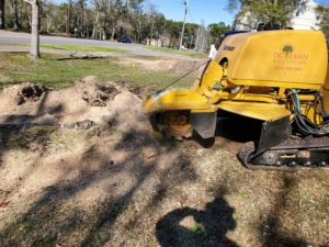 stump grinding project by dc lawn and landscape in fairhope, alabama