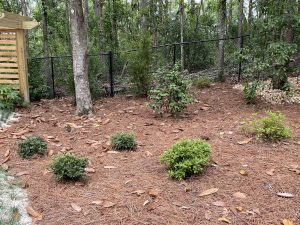 Landscape install by DC Lawn and landscape in Fairhope, AL