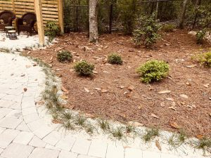 pebbles, straw and shrubs outside a walkway done by dc lawn and landscape in fairhope, al