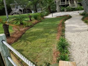 new sod installed by DC Lawn and Landscape in Fairhope, AL